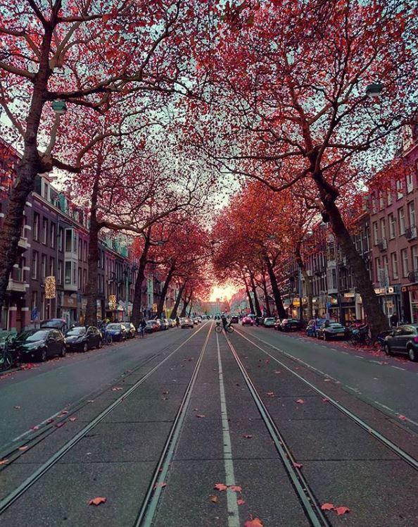 Amsterdam-Best Instagram by @amsterdam_special - Centuurbaan