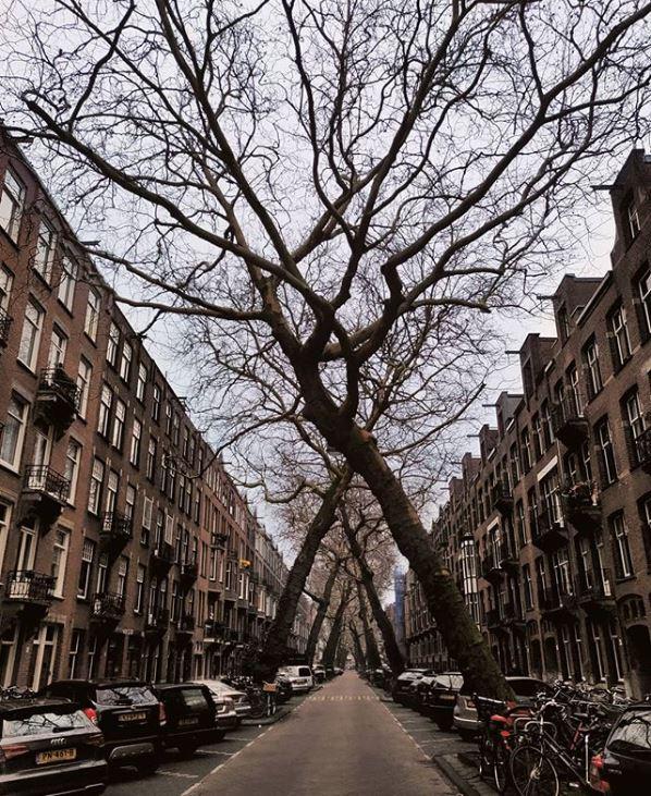 Amsterdam-Best Instagram by @amsterdam_special - Lomanstraat